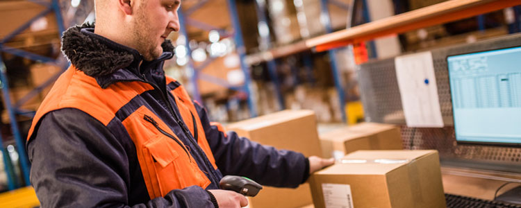 scanning-in-warehouse
